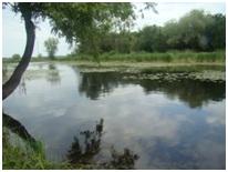 «Охрана реки Волги - обеспечение нашего будущего на Земле!»